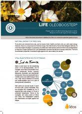 thumbnail of OB-LIFE-brochure