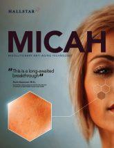 thumbnail of Micah Brochure